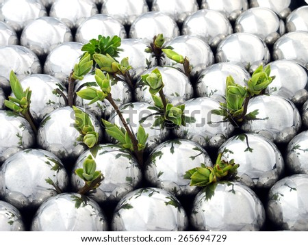 young shoots of plants and shiny metallic balls   - stock photo