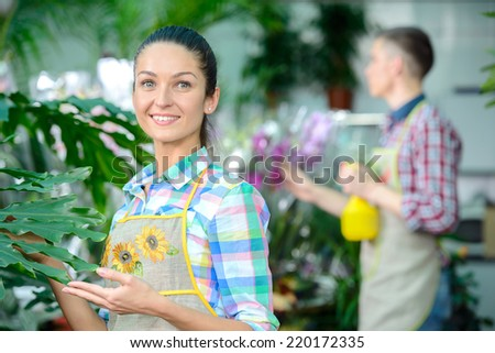 Young smiling florists man and woman working in the greenhouse. - stock photo