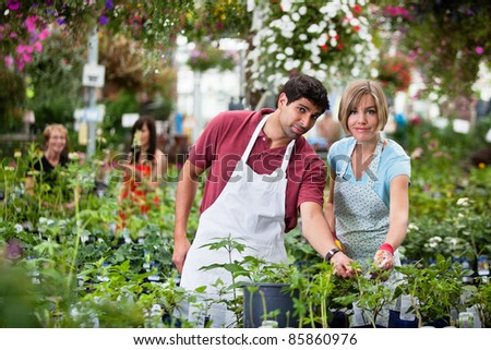 Young smiling florists working in the greenhouse