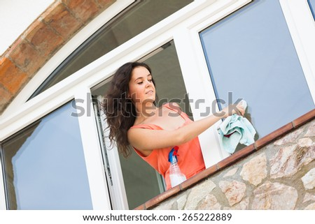 Young smiling housewife cleaning windows using atomizer - stock photo