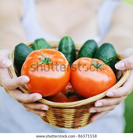 Young smiling woman holding basket full of ripe vegetables at summer green park. - stock photo