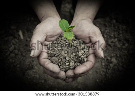 Young sprout is holden by hands with the ground background. - stock photo