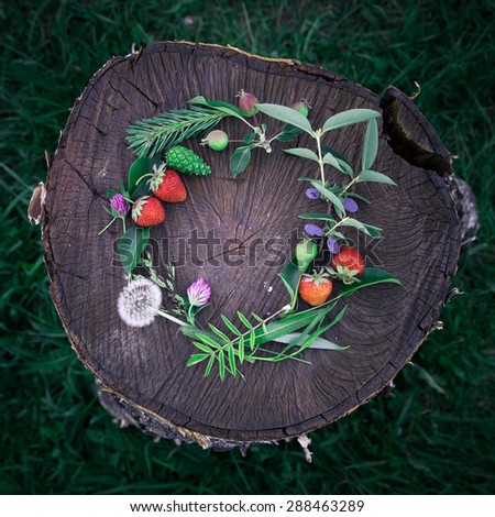 Young summer flower and fruit wreath on wooden background - stock photo