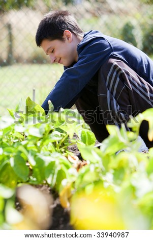 Young teenager working in the garden