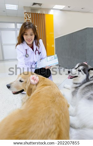 Young veterinarian with the cute dog at hospital