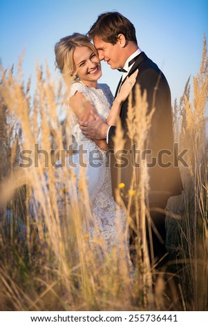 Young wedding couple standing in a field of pigweed in the setting sun. Newlyweds hug with a smile. - stock photo