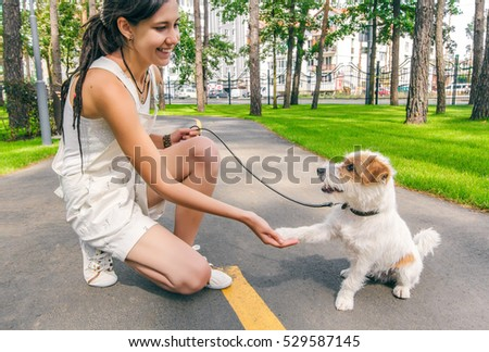 Pics Of Dogs Cats People Shaking Hands