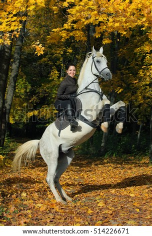 Young woman and her beautiful white arabian stallion rearing up in the autumn woods