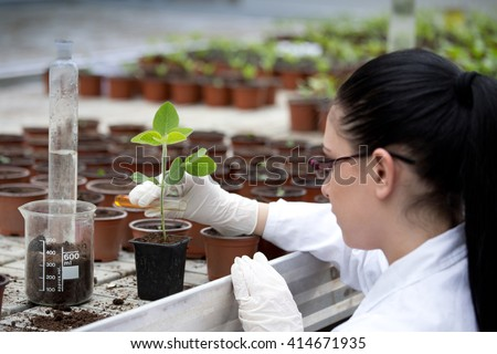Young woman biologist in white coat pouring liquid from test tube into flower pot with sprout in greenhouse - stock photo