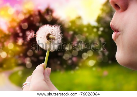 Young woman blowing dandelion - stock photo