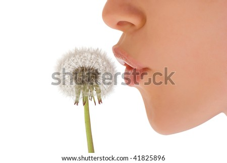 Young woman blowing white dandelion - stock photo