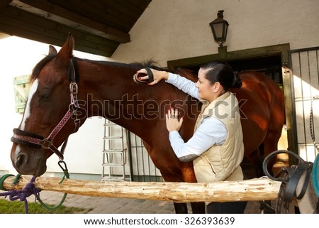 Young woman caressing and grooming brown horse.