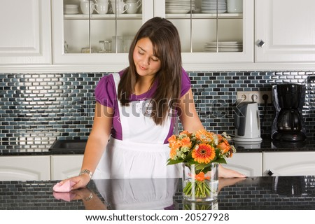 Young woman cleaning the kitchen with a cloth - stock photo