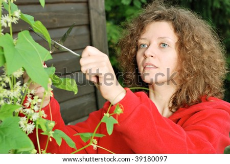 Young woman cutting climber plant with scissors