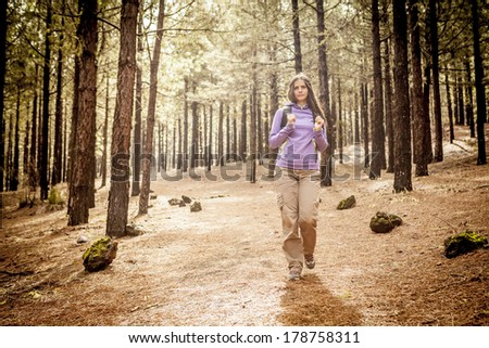 young woman hiking in a pine wood - stock photo