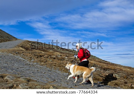 Young woman hiking in autumn mountains with akita dog - stock photo