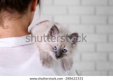 Young woman holding cat on light wall background