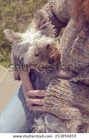 Young woman hugging and cuddling her Yorkshire terrier puppy dog in her lap.Vintage style color applied. - stock photo