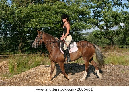 Young woman in riding gear sitting on a horse with trees and blue sky to the rear. - stock photo