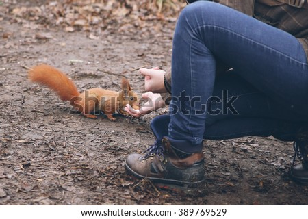 Young woman is feeding squirrel in autumn forest.