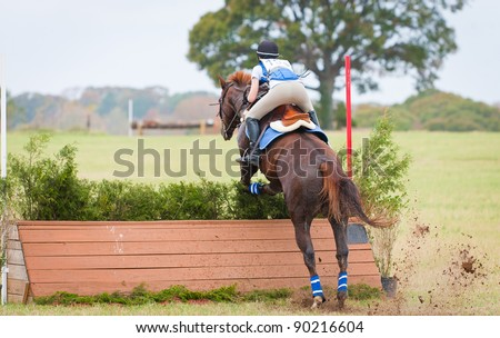 Young woman jumping brush obstacle on a cross country course - stock photo