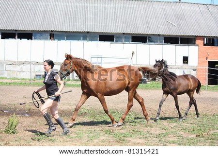 Young woman leading chestnut mare and her foal - stock photo