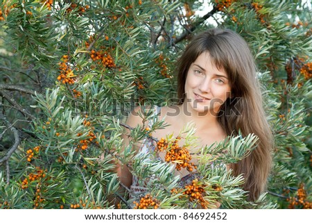 Young woman picking seabuckthorn  in the plant - stock photo