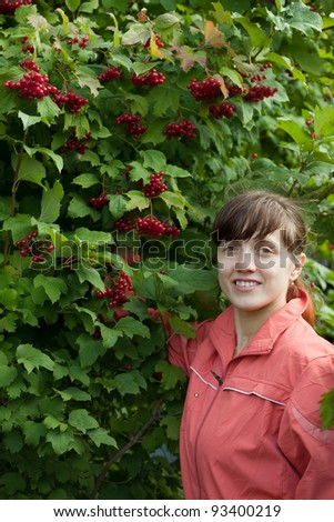 Young woman picking viburnum in the plant - stock photo