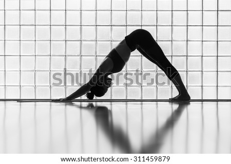 Young woman practicing in a yoga studio. Downward facing dog is the basic yoga pose. - stock photo