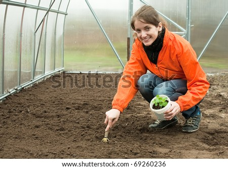young woman resetting  sprouts in bed at hothouse - stock photo