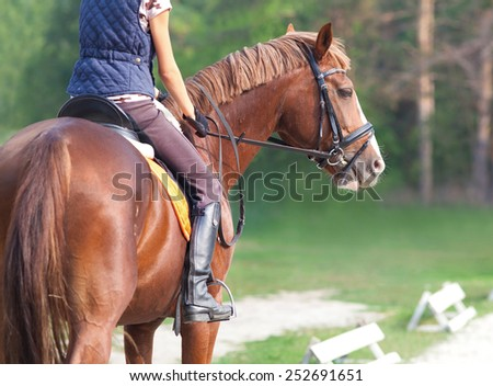 young woman rider and horse in training place - stock photo