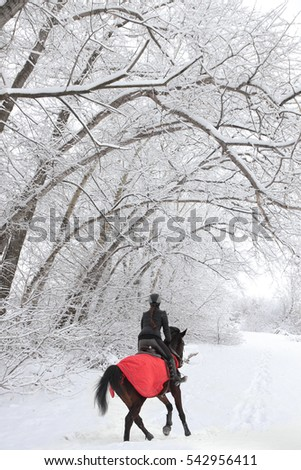 Young woman riding a horse through snow woodland