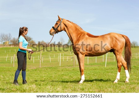 Young woman riding trainer holding purebred chestnut horse. Exterior image with side view. Multicolored summertime outdoors image. - stock photo