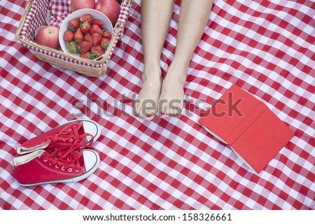 Young woman's feet on a checkered blanket with a picnic basket - stock photo