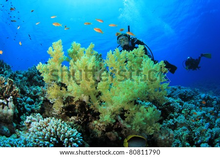 Young Woman Scuba Diving Instructor exploring a Coral Reef in the Red Sea - stock photo