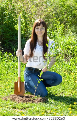 Young woman sets tree outdoor in spring - stock photo