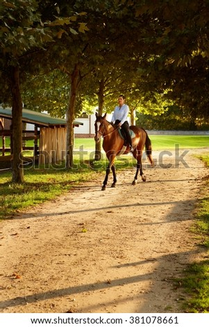 Young woman sitting on horseback in the green. - stock photo