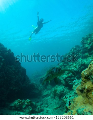young woman swimming with a green sea turtle in the deep blue pacific ocean