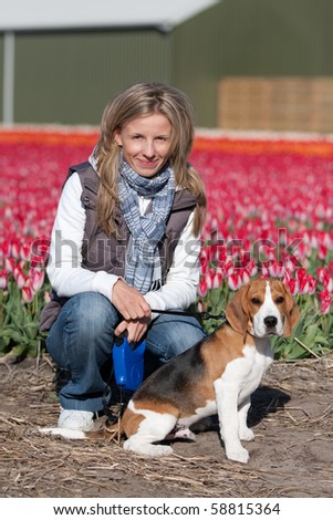 Young woman walking with her beagle dog on flower fields - stock photo