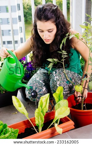 Young woman watering her small kitchen garden in pots on the balcony - stock photo