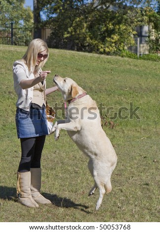 young woman with a labrador dog in the park - stock photo