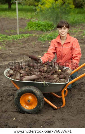 young woman with beetroot harvest in field