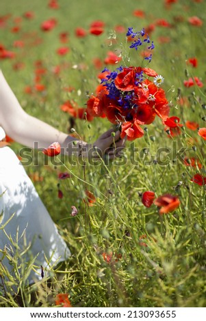 Young woman with scarlet bouquet on field background - stock photo