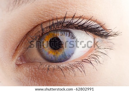 Young Women eye. Studio closeup shot (macro)