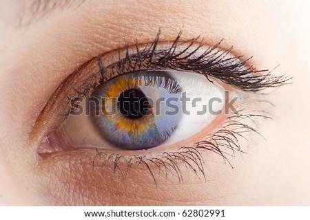 Young Women eye. Studio closeup shot (macro) - stock photo