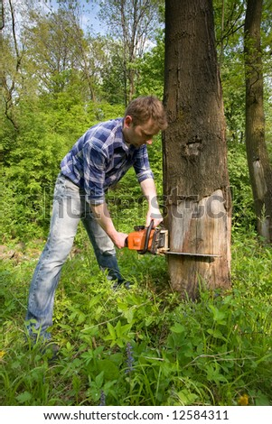 Young worker cutting old dead tree - stock photo