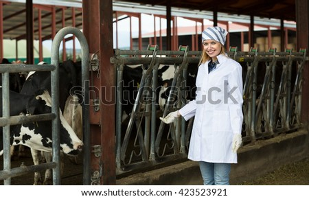 Young worker taking care of dairy herd in livestock farm
