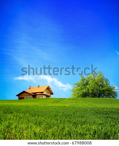 Your House - stock photo