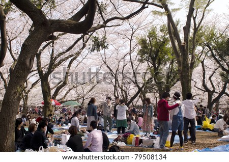 YOYOGI PARK, TOKYO - APRIL 10: Japanese people gather on April 10th, 2011 in Yoyogi Park, Tokyo, Japan to celebrate the peak of the Cherry Blossom viewing season.