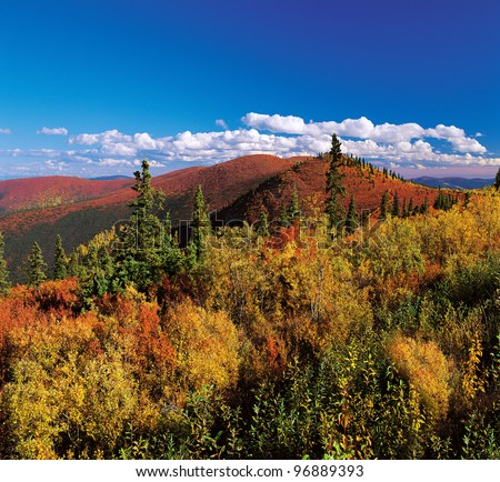 Yukon Mountains in the fall colors - stock photo